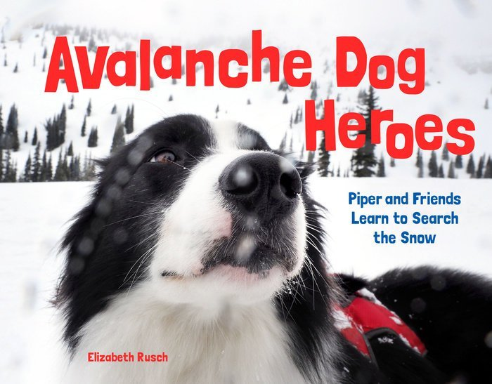 avalanche dog cover