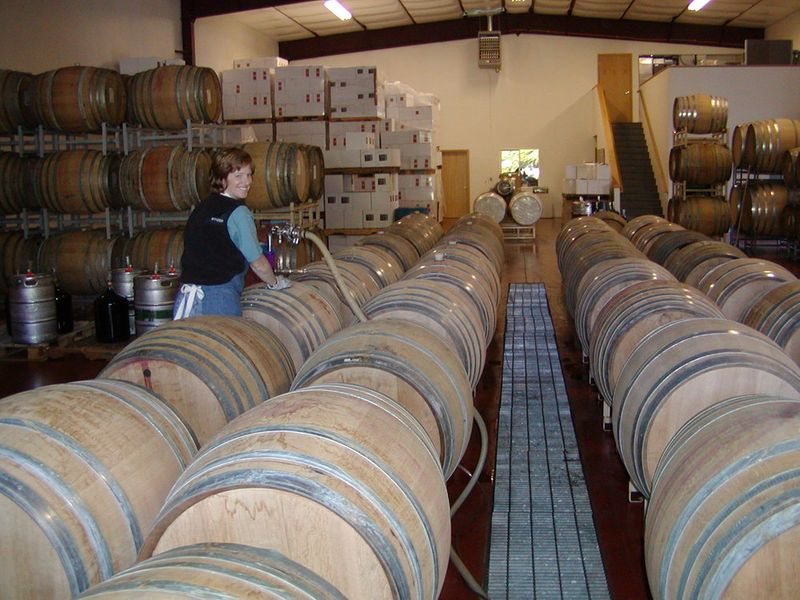 Woman filling wine barrels