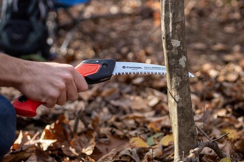 saw on tree limb